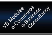 VB Modules, e-Commerce, e-Business, ERP Systems, Consultancy